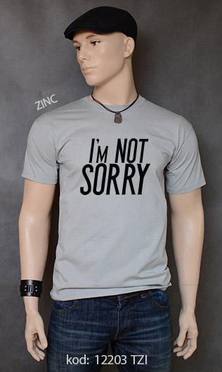 koszulka męska I'M NOT SORRY kolor zinc
