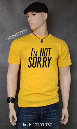 koszulka męska I'M NOT SORRY kolor ciemnożółty