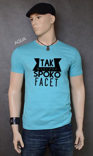 koszulka męska SPOKO FACET kolor aqua